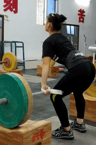 Training Straps